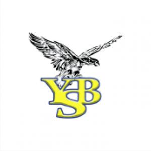 https://www.facebook.com/ybsdacfanklub